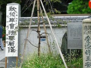 2013 9 23 自性院.JPG