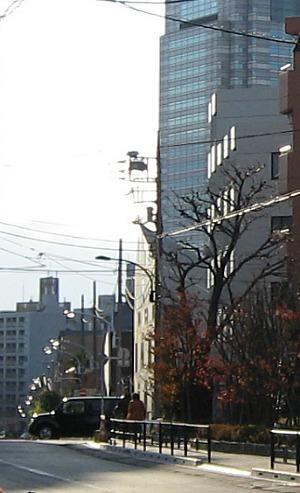 2012-1-9 012RR.jpg