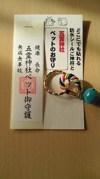 NEC_0895.JPG