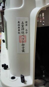 NEC_0900.JPG