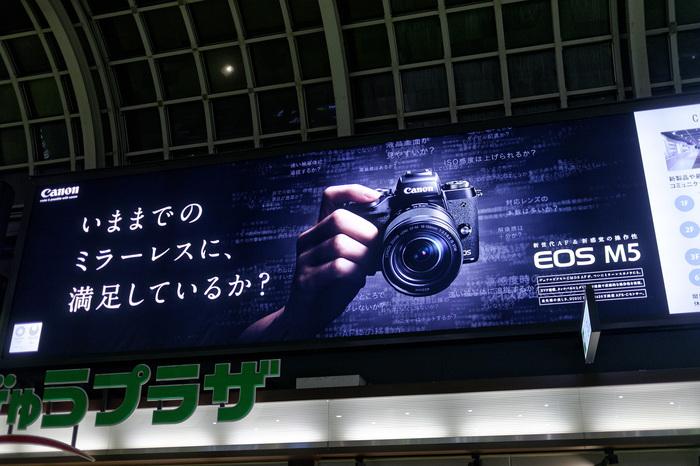 P1080402_DxO.jpg