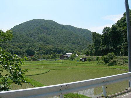 あわじ花山水10.jpg