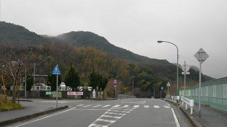あわじ花山水22.jpg