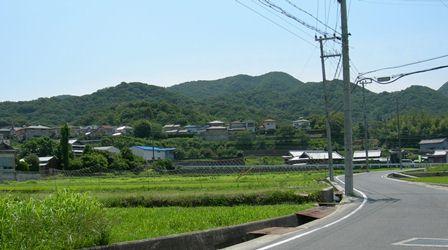 あわじ花山水7.jpg