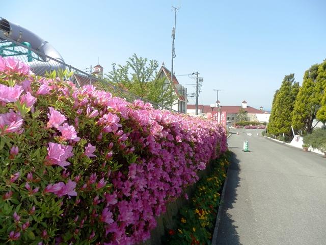 パルシェ香りの館16.jpg