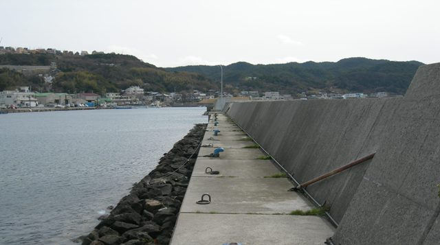 丸山漁港14.JPG