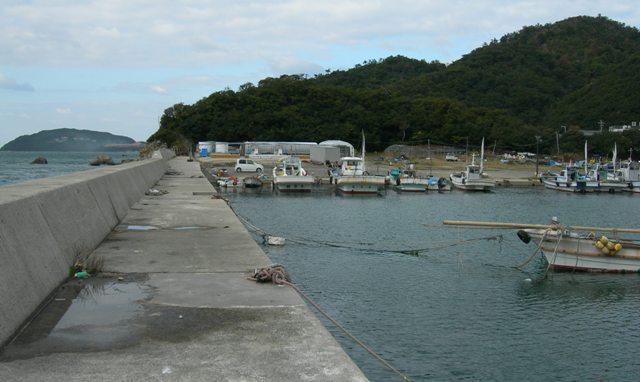 伊毘漁港12.JPG