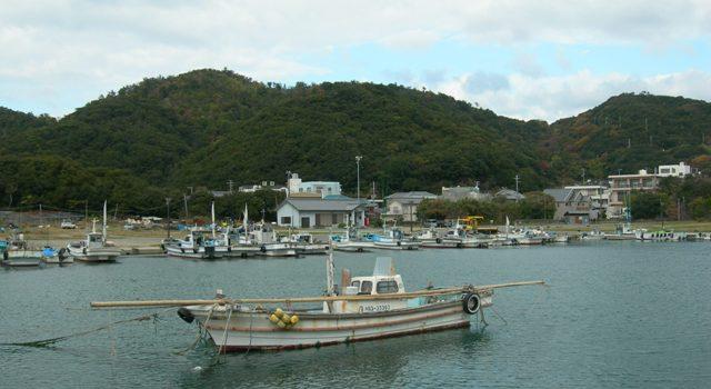 伊毘漁港13.JPG