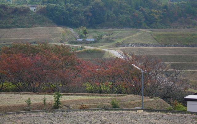 平林荘11.JPG