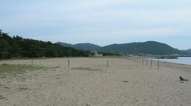 慶野松原海水浴場15.JPG