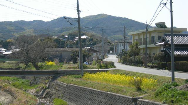 智禅寺4.JPG