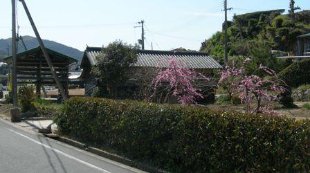 智禅寺5.JPG