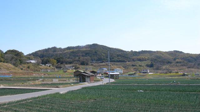 智禅寺9.JPG