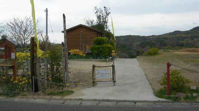 水仙の丘10.JPG