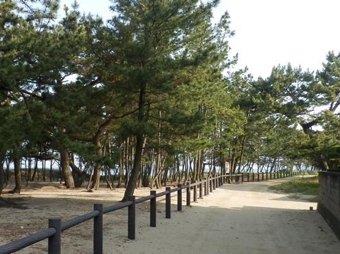 緑の道しるべ慶野公園16.jpg