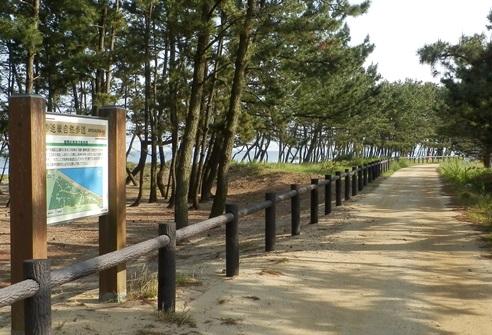 緑の道しるべ慶野公園17.jpg