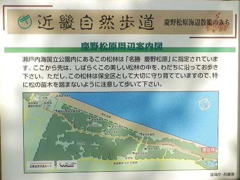緑の道しるべ慶野公園18.jpg