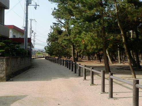 緑の道しるべ慶野公園19.jpg