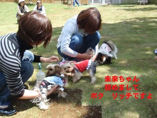 105_063_r_miku.jpg