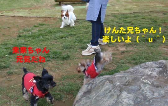 108_155_kenta_miku.jpg