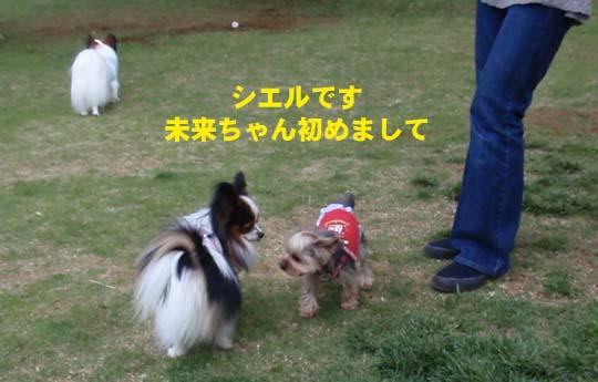 109_182_c_miku.jpg