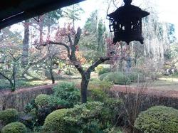 喜多院の庭園