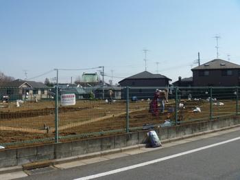 板橋畑1.JPG