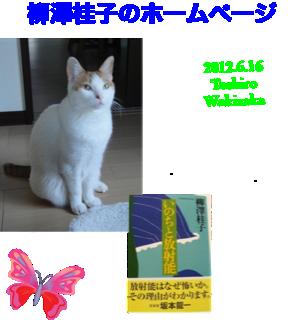 image-20120616134443.png