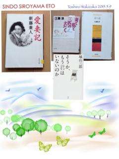 image-20150509094402.png