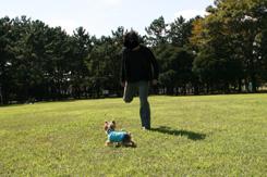 2008_03110049_edited-1のコピー.jpg