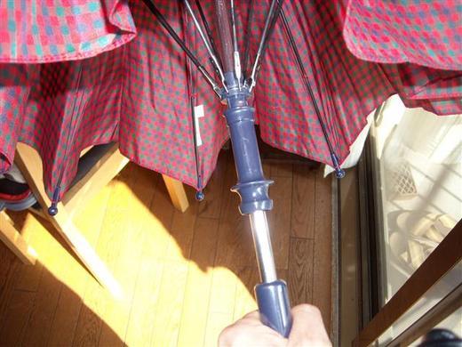 umbrella (1)_R.jpg