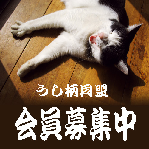 so-net6232617.jpg