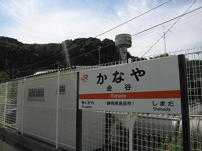 金谷のお茶畑(2007年8月28日)...