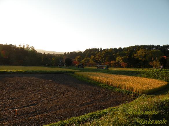 ふるさと村景色.JPG