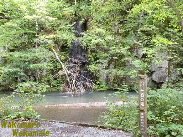 千筋の滝.JPG
