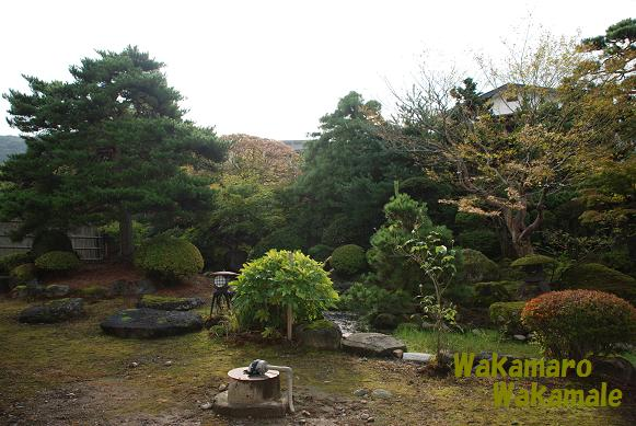 岡部荘庭園2.JPG