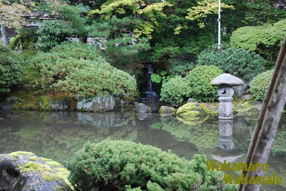 岡部荘庭園3.JPG