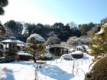 Shinjyuku Garden Snow (5)_S.JPG