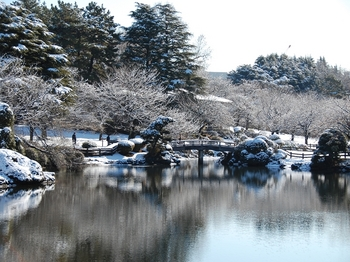 Shinjyuku Garden Snow (6)_S.JPG