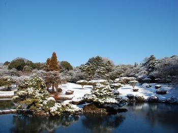 Shinjyuku Garden Snow (7)_S.JPG