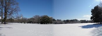 Snow Panorama-2.jpg