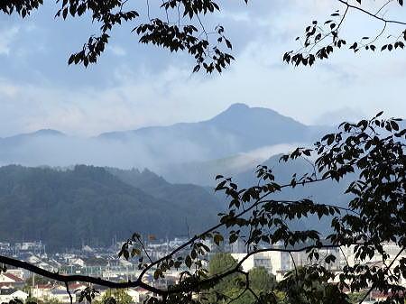 朝の大岳山 a .jpg