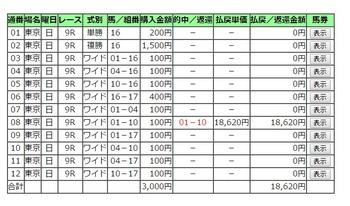 軸馬評価理論151101東京9.jpg