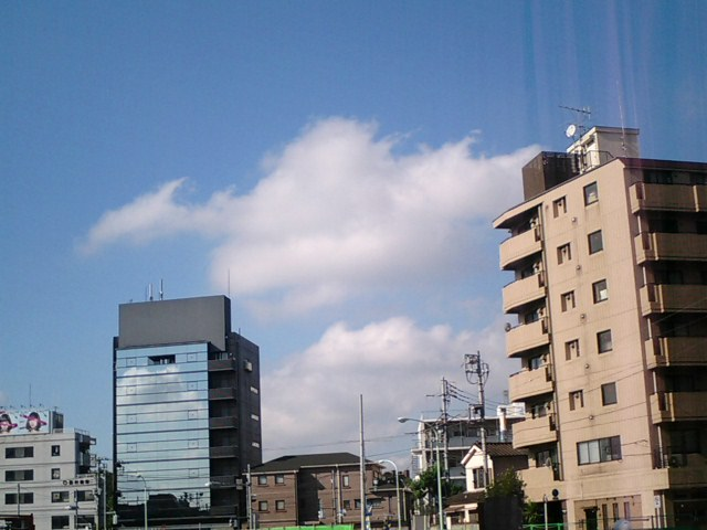 20060904.JPG
