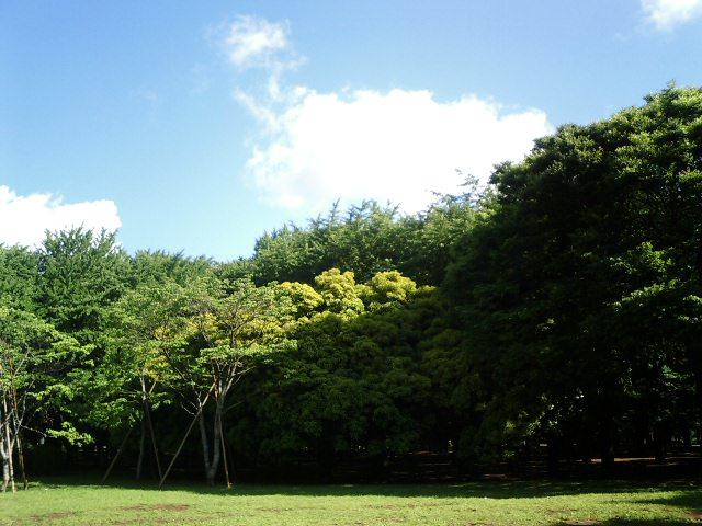 20070528.JPG