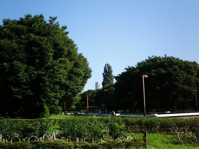 20070724.JPG