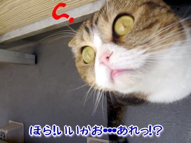 どこ?3.jpg