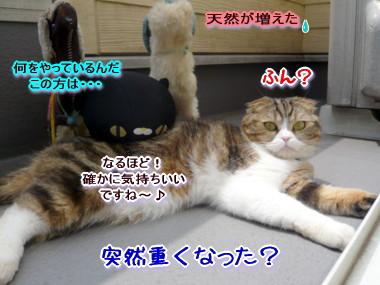 反応4.jpg