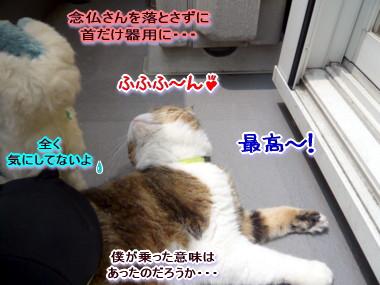 反応7.jpg