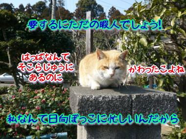 葉っぱ19.jpg